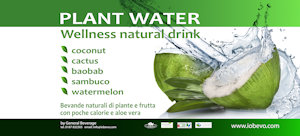 Format Plant Water