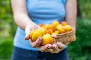Caldo estivo? Il segreto sono frutta e verdura!